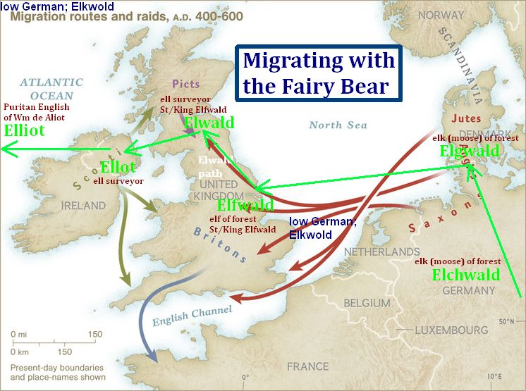 Migrating-with-the-Fairy-Bear