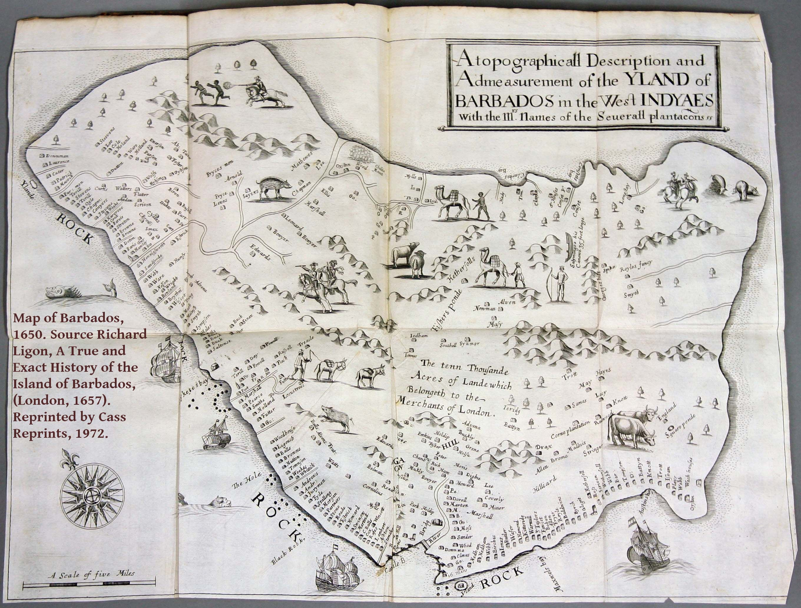 map-of-barbados-1650-source-richard-ligon